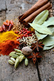 Herbs and spices selection Stock Images