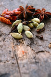 Herbs and spices selection Royalty Free Stock Image