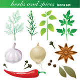 Herbs and spices set Royalty Free Stock Photo