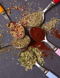 Herbs and Spices. On a slate background Royalty Free Stock Photo