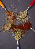 Herbs and Spices. On a slate background Royalty Free Stock Photography