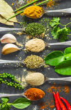 Herbs and spices  on the spoon, close up Royalty Free Stock Photography