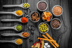 Herbs and spices still life. Colorful herbs and spices decorated over monochrome setup royalty free stock photos