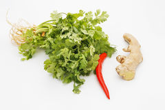 Herbs and spices for Thai food stock photo