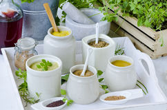 Herbs and Spices. Variety of Mustards. Stock Image
