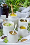Herbs and Spices. Variety of Mustards. Royalty Free Stock Image