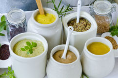 Herbs and Spices. Variety of Mustards. Royalty Free Stock Photography