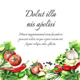 Herbs and spices. Watercolor background. And template Royalty Free Illustration