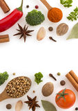 Herbs and spices on white. Background Stock Photography