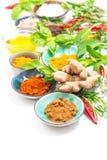 Herbs spices Curry turmeric ginger salt nutmeg powder Stock Photos