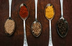 The herbs and spices on a wooden background royalty free stock photography