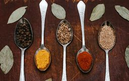 The herbs and spices on a wooden background royalty free stock photos
