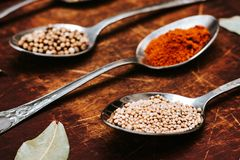 The herbs and spices on a wooden background stock photography