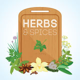 Herbs and spices with wooden chopping board stock illustration