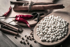 Herbs and spices on wooden Stock Photography