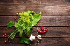 Herbs and spices on wooden culinary background, ingredients for cooking, top view, space for text Stock Image