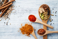 Herbs and Spices on Wooden Spoons Stock Images