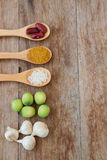 Herbs and spices in wooden spoons on wooden background Stock Images