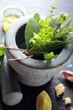 Herbs on Stone Mortar and Pestle Stock Photo