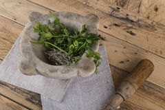 Herbs in stone mortar with wooden pestle Stock Photos