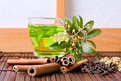Herbs and tea Royalty Free Stock Photo