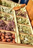 Herbs for tea . Herbs and tea collection . stock image
