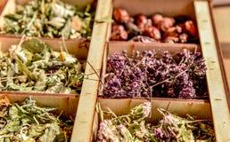 Herbs for tea . Herbs and tea collection . royalty free stock photos