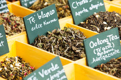 Herbs and tea at counter Stock Photography