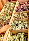 Herbs for tea . Herbs and tea collection . Herbs and tea collection . Herbs and tea at counter stock photo