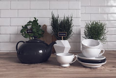 Herbs, Teapot, Cups and Saucers in Modern Kitchen. Trio of Herbs Growing Variety of Containers on Modern Wooden Kitchen Counter with Tea Pot, Cups and Saucers in Stock Photography