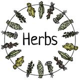 Herbs text in dried herbs on a thread circle ornamental wreath. Flat vector style image. Herbs text in dried herbs on a thread circle ornamental wreath. Flat vector illustration