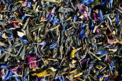 Herbs texture Stock Image