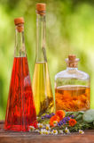 Herbs, tincture, essenz, liquor Stock Photography