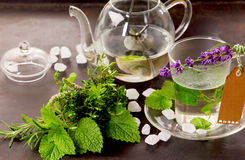 Herbs tisane and mint tea cup still life. On rustic black background with fresh green leaves and herbs Stock Images