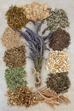 Herbs to Help Sleeping Disorders Royalty Free Stock Photo