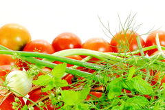 Herbs and tomato Royalty Free Stock Photography