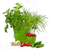 Herbs, tomatoes,cucumber and garlic Royalty Free Stock Photography