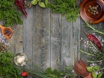 herbs various Στοκ εικόνα με δικαίωμα ελεύθερης χρήσης