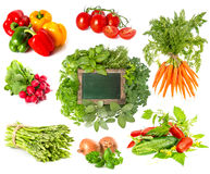 Herbs and vegetables isolated on white background Stock Photography