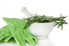 Herbs In A White Mortar and Pestle Ceramic Pot Royalty Free Stock Image