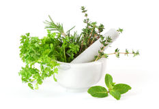 Herbs whith mortar and pestle Royalty Free Stock Photo