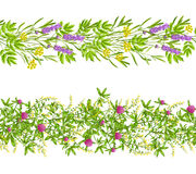 Herbs And Wild Flowers Seamless Pattern. Horizontal blooming herbs and wild flowers border seamless pattern set isolated on white background flat vector Stock Illustration