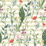 Herbs and Wild Flowers vector seamless pattern. Of botany texture bdckground illustrations vintage flowes images Stock Illustration