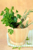 Herbs in wooden mortar Royalty Free Stock Image