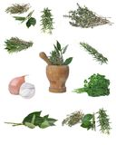 Herbs and a wooden pestle Stock Image