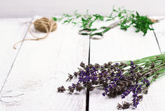 Herbs on a wooden table, savory, thyme, lavender Stock Image