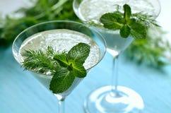 Herbs and yogurt smothie Royalty Free Stock Photo