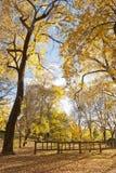 Herbst-öffentlich Garten, Spanien Stockfotografie