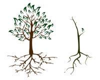 Herbst-Ökologiesorgfalt mit 2 Bäumen lizenzfreie abbildung