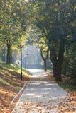 Herbst. Lizenzfreies Stockfoto